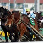ばんえい競馬 2010.1.16
