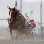 ばんえい競馬 2010.6.20