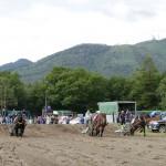 ひがし北海道馬事祭 第2回摩周湖ばん馬大会