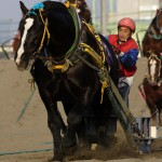 トモエパワー 坂本騎手