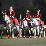 誘導馬クリスマスVer.