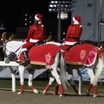誘導馬クリスマスVer.尻尾にリボン