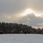 雪国の朝日