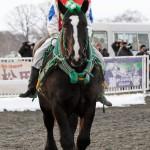 トモエパワー 西謙一騎手 西弘厩舎