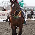 アアモンドヤワラ 村上章騎手 小林厩舎