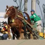 ばんえい競馬 2013.2.2-3