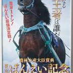 まだ間に合う?!ばんえい競馬、3月24日に行われる第45回ばんえい記念(BG1)観戦