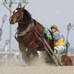 ばんえい競馬 2013.3.23-25