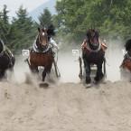 瓜幕競ばん馬競技大会  鹿追町 ライディングパーク 2013.7.14
