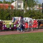 今度は、富士フイルムのXQ1で競馬を撮ってみた。