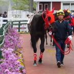 富士フイルムのFinePixF1000で競馬を撮ってみた。