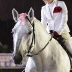 第26回 ばんえいグランプリ 誘導馬ミルキー