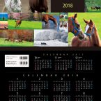 ホースマンカレンダー2018の2月に採用されました。